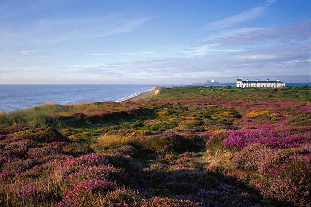 Dunwich Heath credit Malcolm Farrow