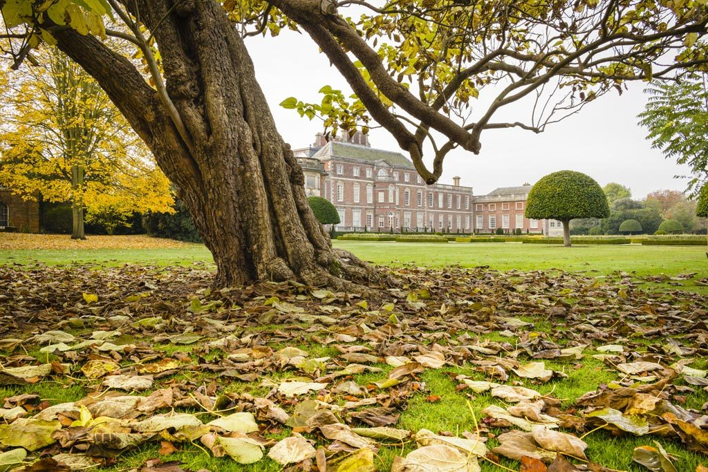 The parkland on an autumn morning at Wimpole, Cambridgeshire